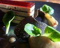 Duck foie gras from Landes, black truffle, 'opera' style,lamb's lettuce and seasoned toast