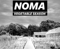 Meal at Noma – Vegetables