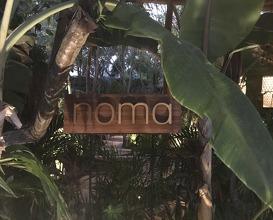 Noma Mexico