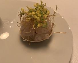 Sea bream tartlet