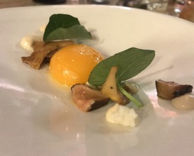 Egg yolk and mushrooms