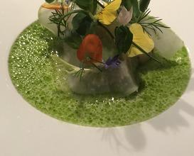 Hiramasa Kingfish Kohlrabi, Zitronenschale & Dill