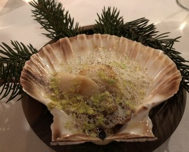 Scallop cooked on the shell with flavoured fir butter