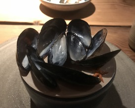best or the mussel