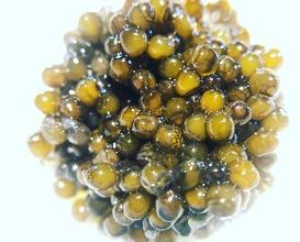 Smoked caviar