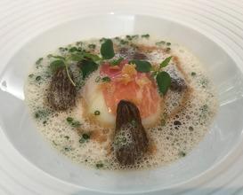 Bio Onsen-Ei mit Friühlings-Morcheln, Petersilienpüree & krosser Geflüigelhaut