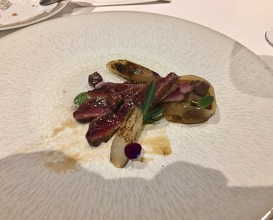 """Azulon"" duck from Albufera"
