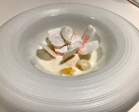 Soup of white petals