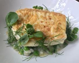 Halibut & asparagus risotto