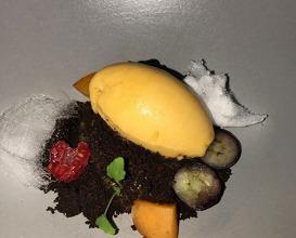 Mandarin cream with chocolate,  carob & apricot- eucalyptus sorbet