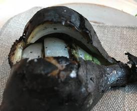 Dinner at Noma (1st day of vegetable season of 2018)