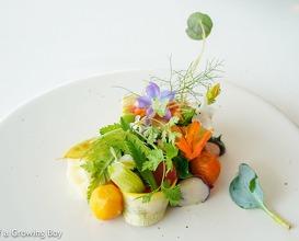 Wonderful long lunch at Hertog Jan
