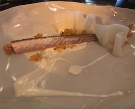 Makrele / Kohlrabi/Salzzitrone