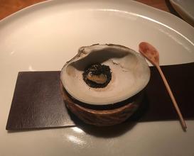 200 year old Mahogany clam & mushroom
