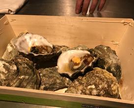 Salty oyster I kimchi I fat