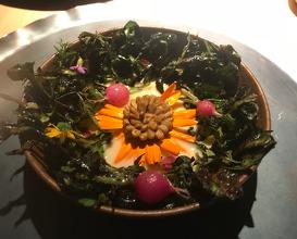 sun flower salad