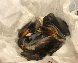 "Steamed Saldanha Bay Mussels ""papillote"" with lemongrass, coconut milk, chilli, lime, ginger and garlic"