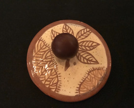 Cacao de Tumaco Selva húmeda del Pacifico