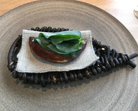 Seafood Season in the second year - Noma 2.0