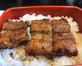 Lunch at 博多名代 吉塚うなぎ屋 Yoshizuja Unagi