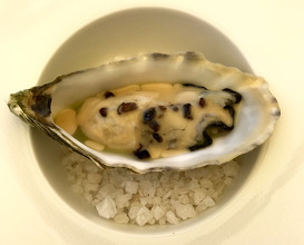 Oyster and ciauscolo fat