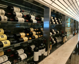 Show case wine cellar