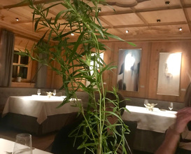 Dinner at Griggeler Stuba
