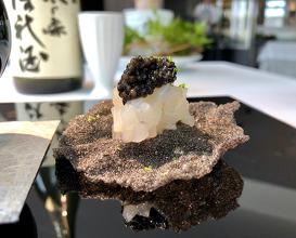 Squid, Fukuoka Sudachi, Tokushima