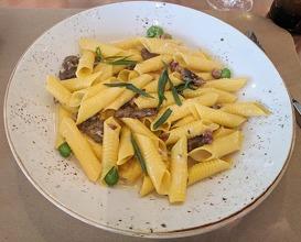 Dinner at Cotogna