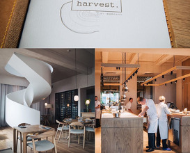 Dinner at Harvest by Duoband