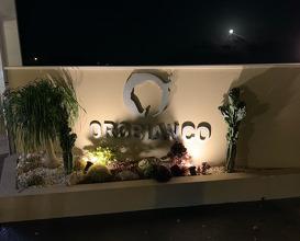 Dinner at Orobianco Ristorante