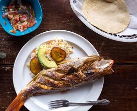 Dinner at Mariscos Balam