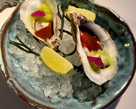 Oyster, nopal. Fermented CHILES