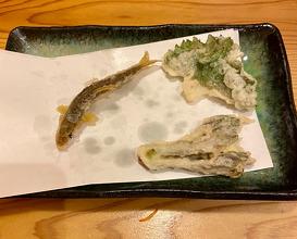 Lunch at Hamacho Kaneko (浜町 かねこ)