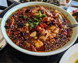 Dinner at 大喜川菜 The Big Szechuan Cuisine