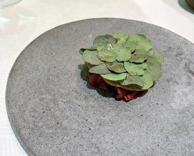 Dinner at Aquavit NYC