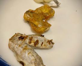 Dinner at Real Balneario