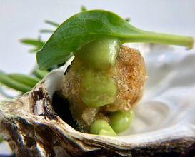 Oyster, essence of herbs and fino