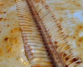 Slip sole grilled in smoked salt butter