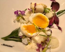 White asparagus, quail egg, sea bass spawn