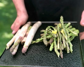 Asparagus before cooking