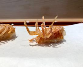 Lunch at Tempura Kondo (てんぷら 近藤)