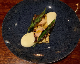 Asparagus from Brandenburg Cured rabbit with lemon