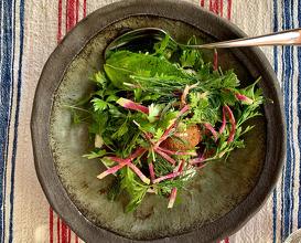 FALAFEL With Parsley and Mint Salad, Cucumber Yogurt