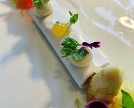 Dinner at Le Canard nouveau