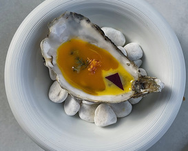 oyster 'escabeche' and mandarin