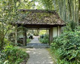Toraya Confectionery Garden