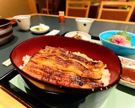 Eel Hirokawa